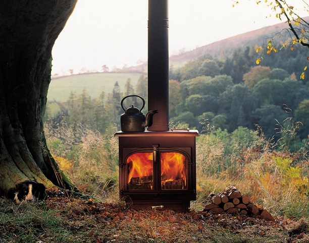 Best Wood for your Stove